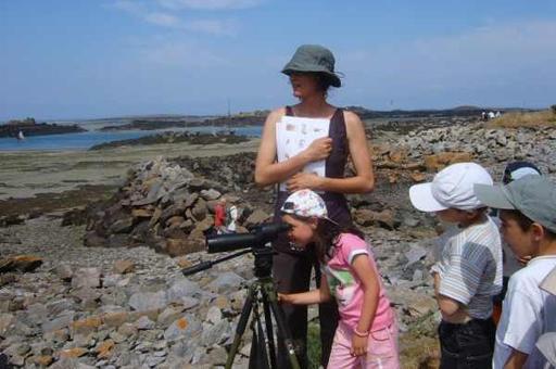 Pêche et oiseaux dans la Baie du Mont St Michel