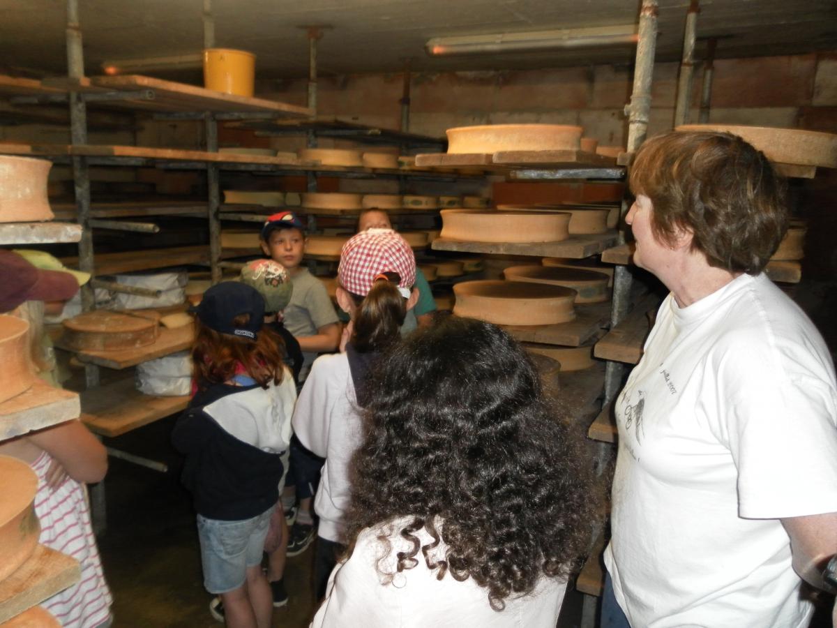 Les fromages des Alpes : de l'alpage à la fabrication